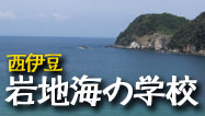 西伊豆岩地海の学校